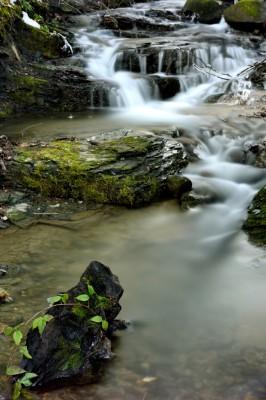 Ruisseau du Bourget en Huile
