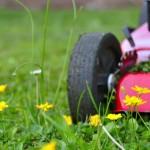 Tondeuse dans l'herbe