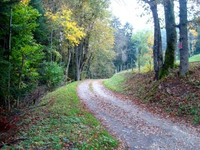 Chemin des granges à l'automne au Bourget en huile