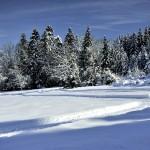 Piste de ski au Bourget en Huile