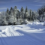 Piste de ski alternatif au Bourget en Huile