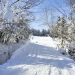Montée des pistes de ski au Bourget en Huile